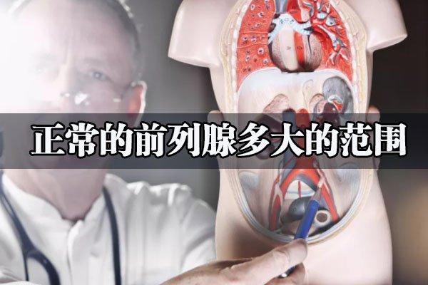 正常的前列腺大小是多少